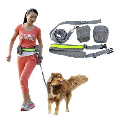 desporto com o cão