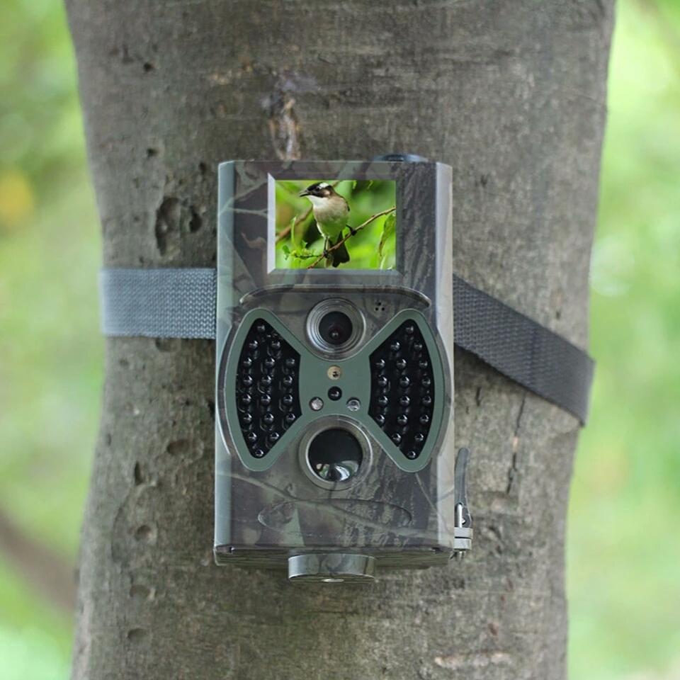 Cameras de vigilancia noturna caça envia E-Mail 4