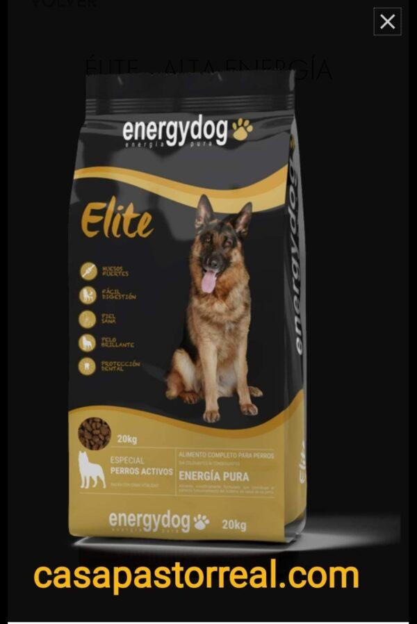 Ração Energydog Élite 20kg envio grátis 1
